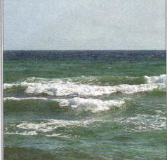 вопрос теста Морской прибой